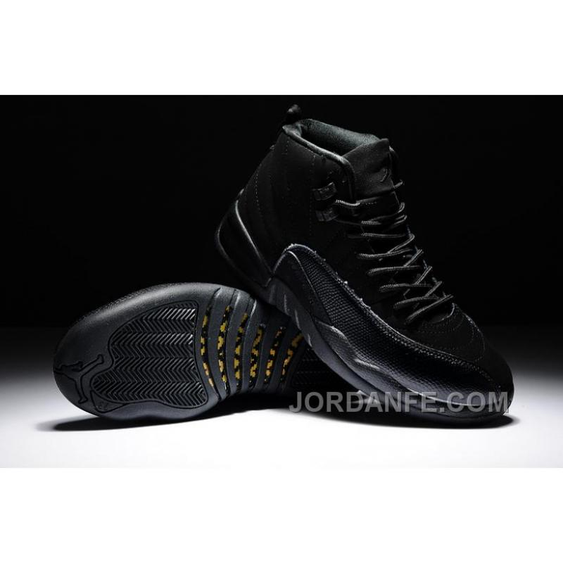 b66c5bc1a87c Air Jordan 12 All Black Hot