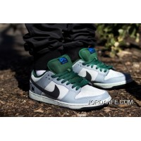 NIKE DUNK PREMIUM LOW SB CANADA 313170-021 BT130 Discount